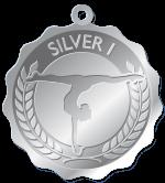 Silve1-Preschool Program Medals